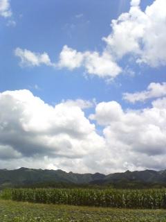 image/toshi-nagai-2006-07-01T14:15:32-1.jpg
