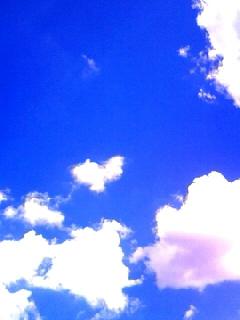 Sept_25_2010_2080001.jpg